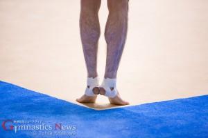 第69回全日本体操個人総合選手権 2015 決勝