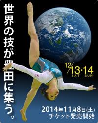豊田国際2014