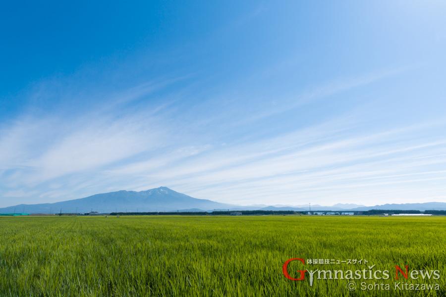 酒田の田園風景